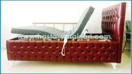 Ev Tipi Hasta Yatağı 2 Motorlu HYE-565